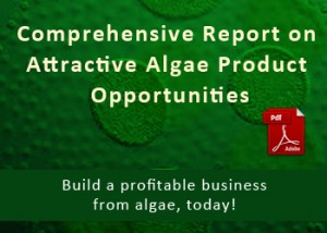 Attractive Algae Product Opportunities