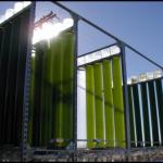 column photobioreactor