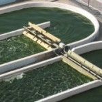 algae biorefinery