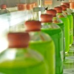 iftach-yacoby-algae-lab-4-889x619