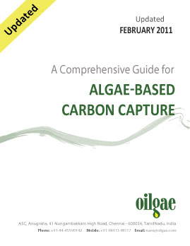 A Comprehensive Guide for Algae-based Carbon Capture